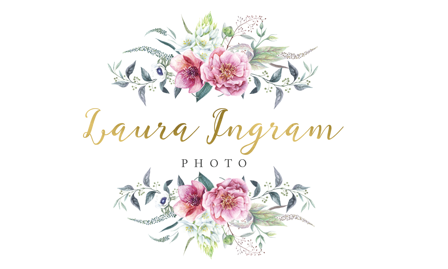 Laura Ingram Photo